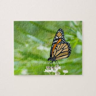milkweedの写真のパズルのマダラチョウ ジグソーパズル