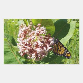 Milkweedの写真のマダラチョウ 長方形シール