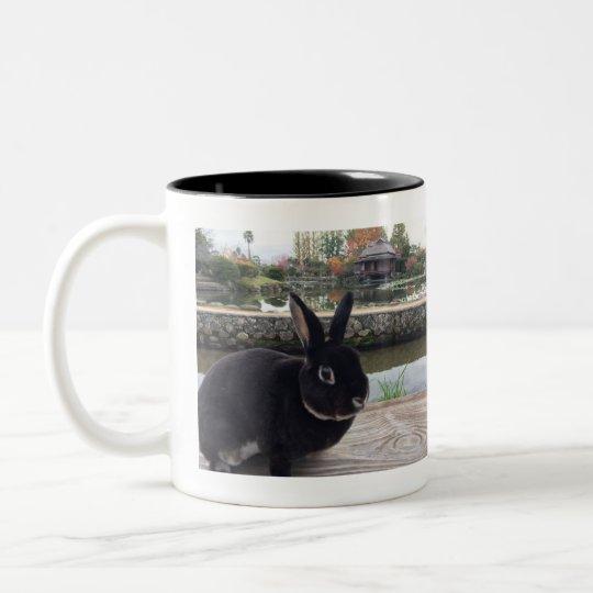MiniRex rabbit Daddy Edward mug ツートーンマグカップ