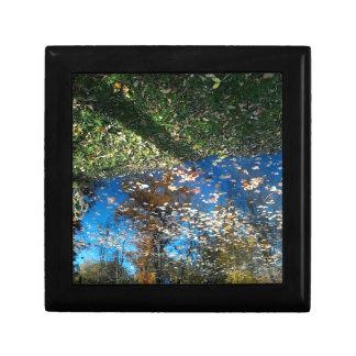 Miroirの鏡の秋の宝石箱 ギフトボックス
