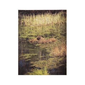 """MJPカナダのガチョウの木製ポスター、19"""" x 14.5 """" ウッドポスター"""