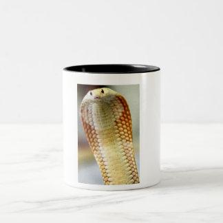 Monacleのコブラ ツートーンマグカップ