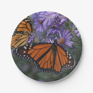Monarch Butterfly ペーパープレート