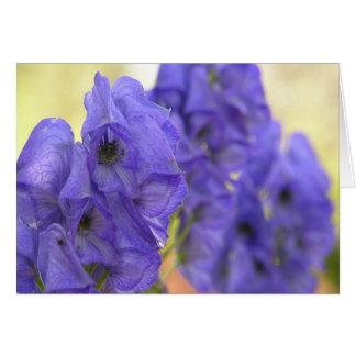 Monkshoodの紫色によっては挨拶状が開花します カード