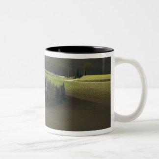 Montepulciano、タスカニー、イタリアのまわりの農地 ツートーンマグカップ