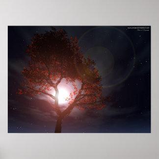 Moonriseの木 ポスター