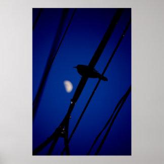 moonriseの鳥 ポスター