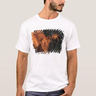Moremiの野性生物の予備、ボツワナ2 Tシャツ