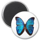 Morphoの青い蝶 マグネット