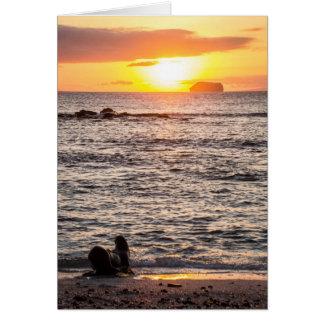 Mosqueraの小島の日没 カード