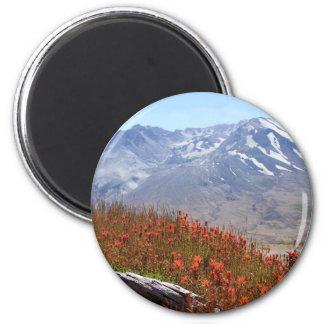 Mount Saint Helensの野生の花 マグネット