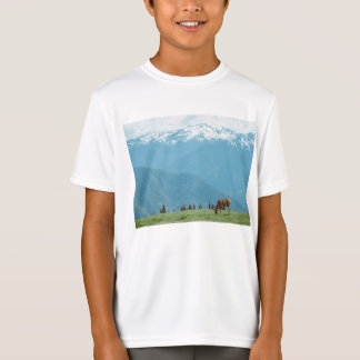 moutains tシャツ