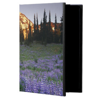 Mt.アダムスおよび副高山草原上の日没 iPad Airケース