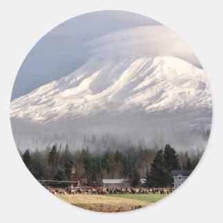 Mt.アダムスの基盤のオオシカによって聞かれるギャザー ラウンドシール