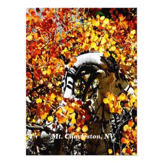 Mt.チャールストンNVの秋の《植物》アスペンの写真のプリント フォトプリント