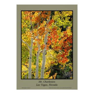 """Mt.チャールストンNVの秋の《植物》アスペン20"""" x28""""ポスター フォトプリント"""