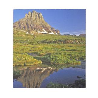 Mt Clementsはローガンに小さいプールに反映します ノートパッド