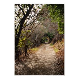 Mt. Wandaの道の招待状 カード