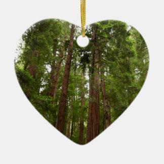 Muirの森の国有記念物のレッドウッドまで セラミックオーナメント