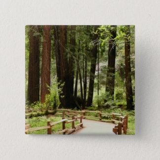Muirの森道I 5.1cm 正方形バッジ