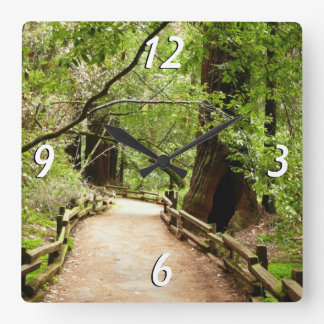 Muirの森道IIの自然の写真撮影 スクエア壁時計