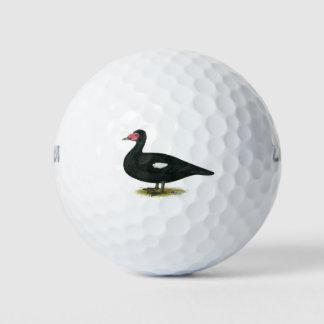 Muscovy黒いドレーク ゴルフボール