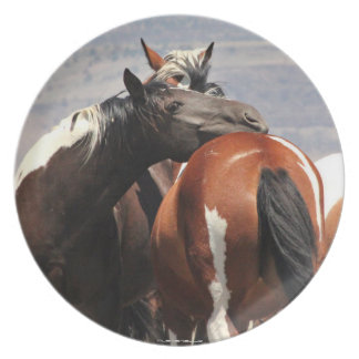 MustangWILDの頑丈なプレート プレート