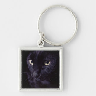 My Black Cat キーホルダー