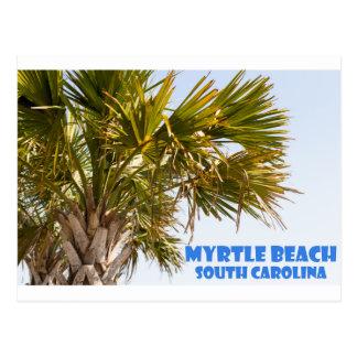 Myrtle Beachサウスカロライナのヤシの木の休暇 ポストカード
