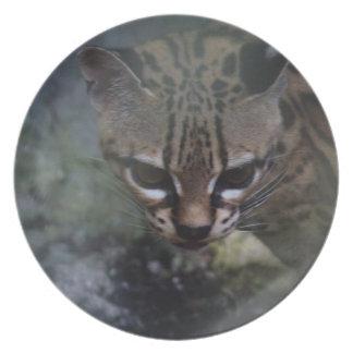 mystの装飾的なプレートの絶滅寸前のOcelet プレート