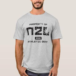 N2Lの運動部門の特性(灰色) Tシャツ