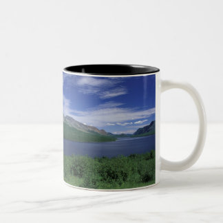 N.A.、カナダ、ニューファウンドランドのGrose Morneのマス ツートーンマグカップ