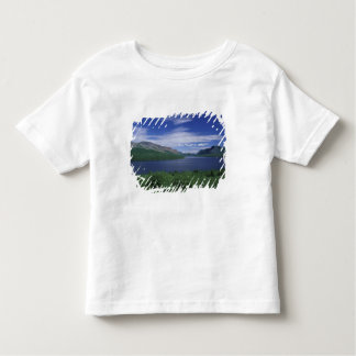 N.A.、カナダ、ニューファウンドランドのGrose Morneのマス トドラーTシャツ