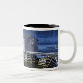 N.A.、カナダ、ニューファウンドランド、Durrell。 採取 ツートーンマグカップ