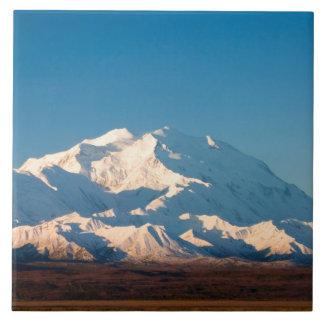 N.A.、米国、アラスカ。  Denaliのデナリ タイル