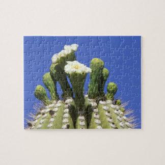 N.A.、米国、アリゾナ、チューソンのソノラの砂漠2 ジグソーパズル