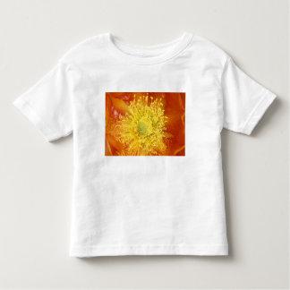 N.A.、米国、アリゾナ、チューソンのソノラの砂漠3 トドラーTシャツ