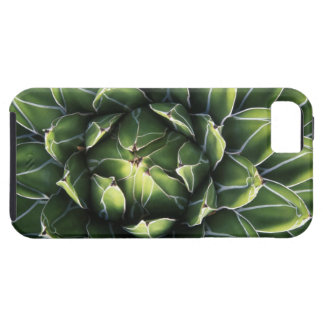 N.A.、米国、アリゾナ、チューソンのソノラの砂漠 iPhone SE/5/5s ケース
