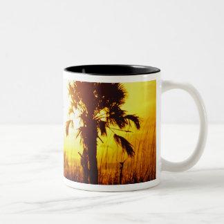 N.A.、米国、サウスカロライナ、チャールストン。 日没 ツートーンマグカップ
