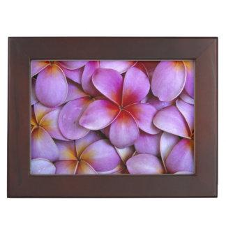 N.A.、米国、マウイ、ハワイ。 ピンクのプルメリアの花 ジュエリーボックス