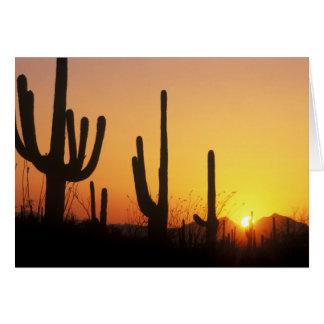 N.A.、米国、AZのサグアロNPのサグアロの日没 カード