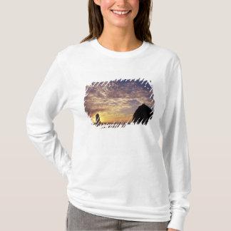 NAの米国、オレゴン、オレゴンの海岸、キャノンのビーチとの Tシャツ