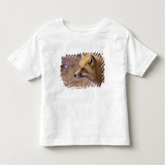 NA、カナダ。 アカギツネ トドラーTシャツ