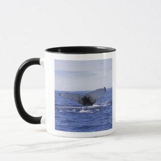 NA、カナダ、ニューファウンドランドの三位一体湾。 Humpback マグカップ