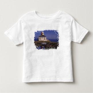 NA、カナダ、ニューファウンドランドの岬のやり。 古い岬 トドラーTシャツ