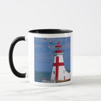 NA、カナダ、ニューブランズウィックのCampobelloの島。 8 マグカップ