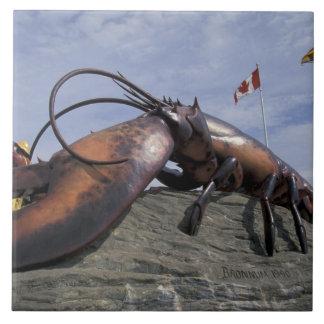 NA、カナダ、ニューブランズウィック、Shediakの世界 タイル