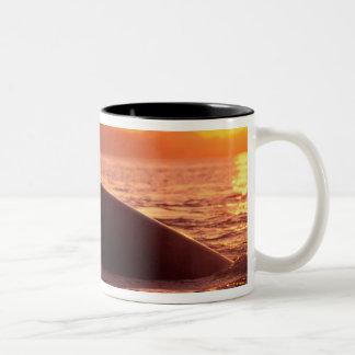 NA、米国、アラスカ、道の中で、Humpback ツートーンマグカップ