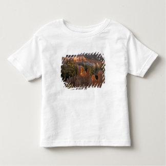 NA、米国、ユタのブライス渓谷NP 2 トドラーTシャツ