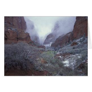 NA、米国、ユタ、Zion NPの春の雪の嵐、 カード